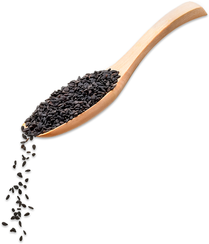 <p><strong>BLACK<br>SESAME</strong><br>SAUCE</p> big image